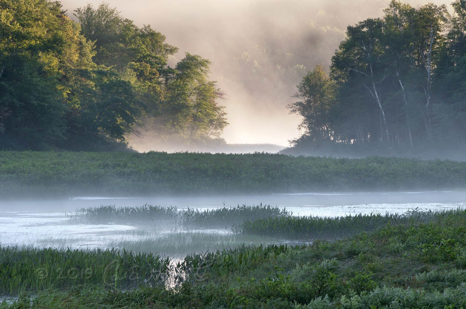 1 The Trails of the Adirondacks - AD misty lake