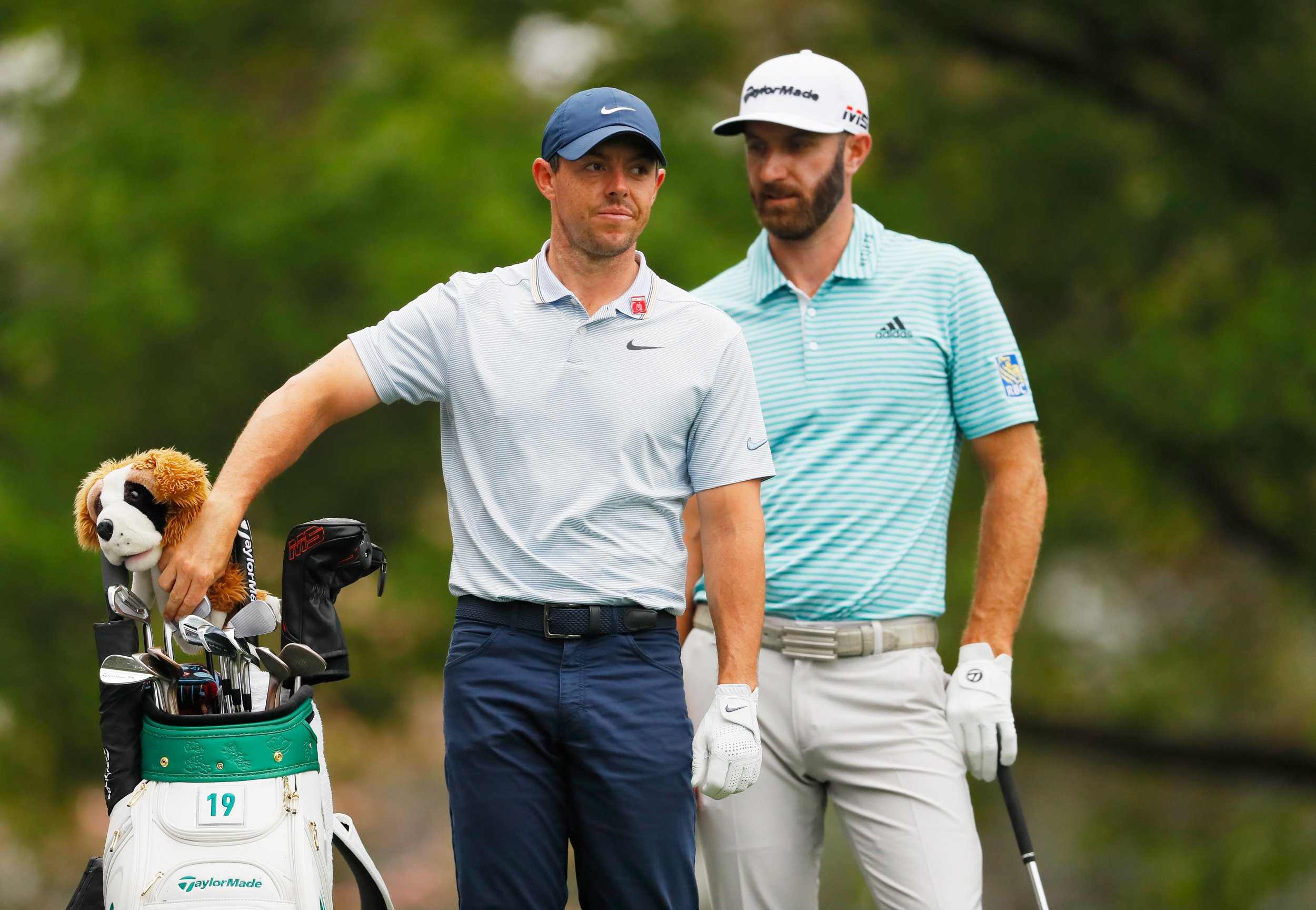 suggestions for tiger woods  rory mcilroy and favorites to