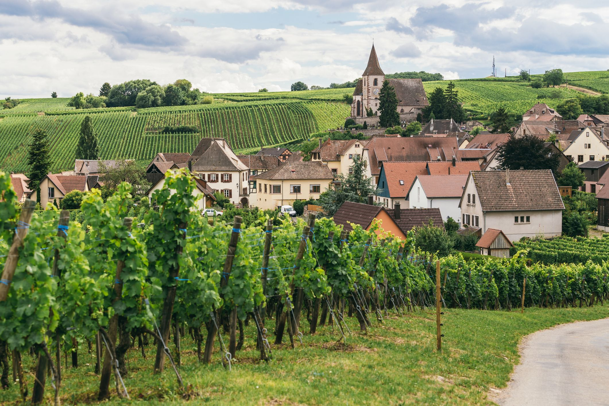 Burgundy - French Wine Regions