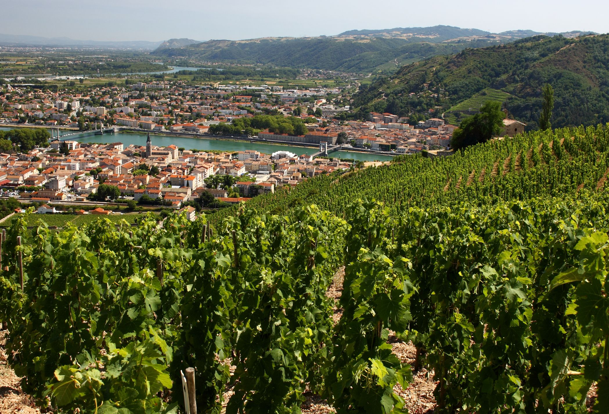 Rhône Valley - French Wine Regions