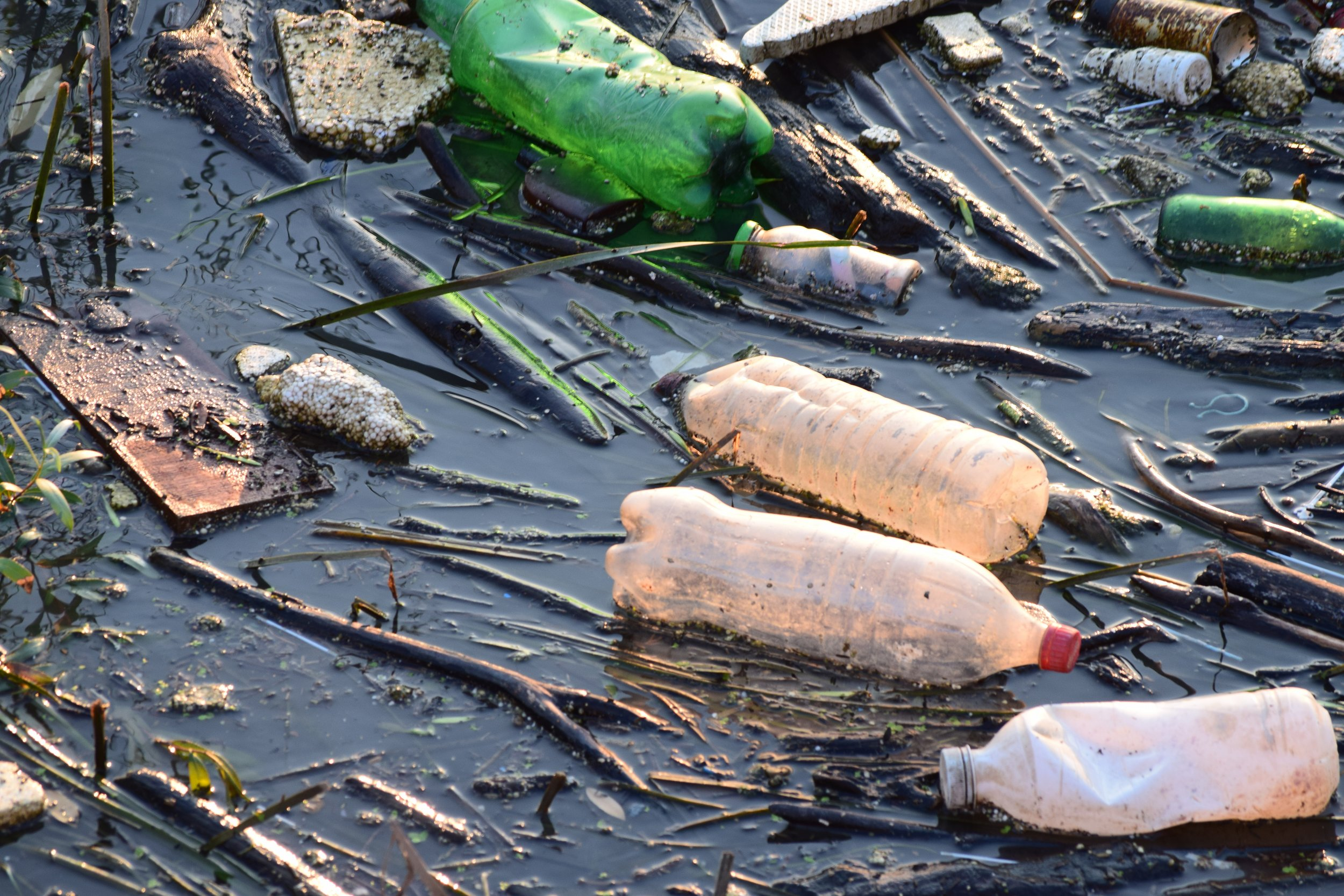 plastic pollution environment stock getty