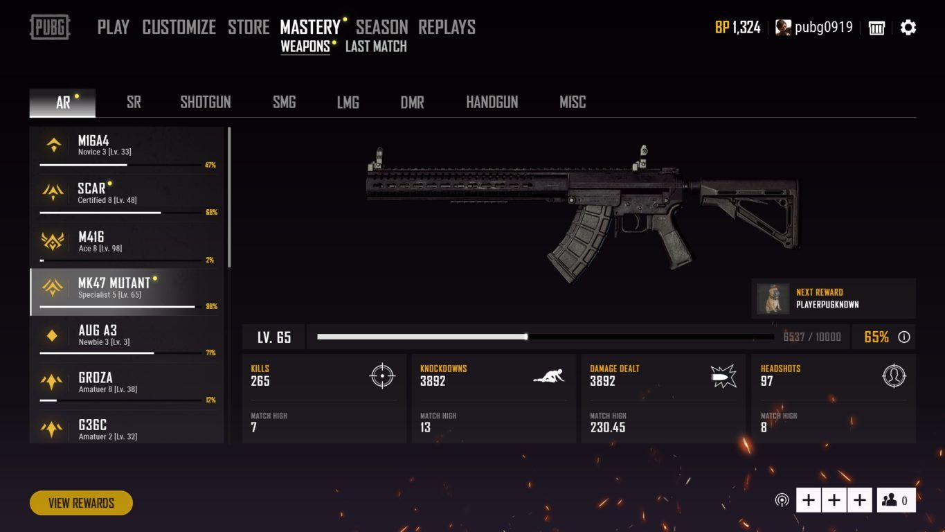 pubg weapon mastery