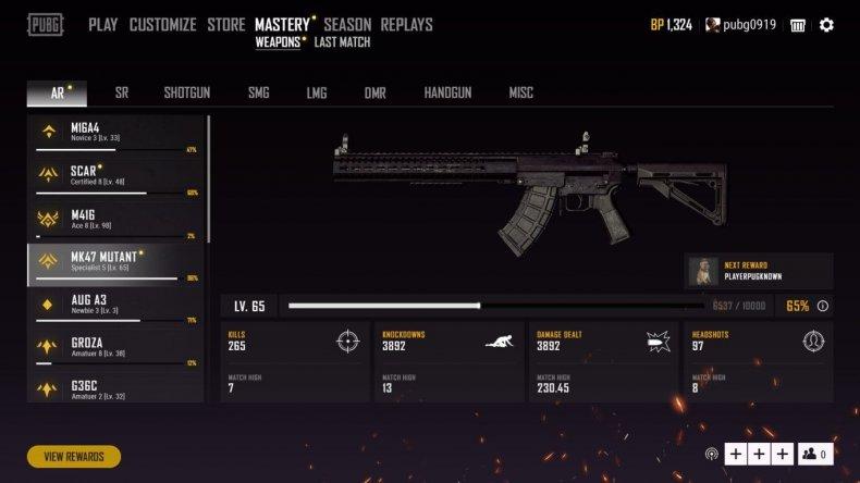 pubg weapon mastery
