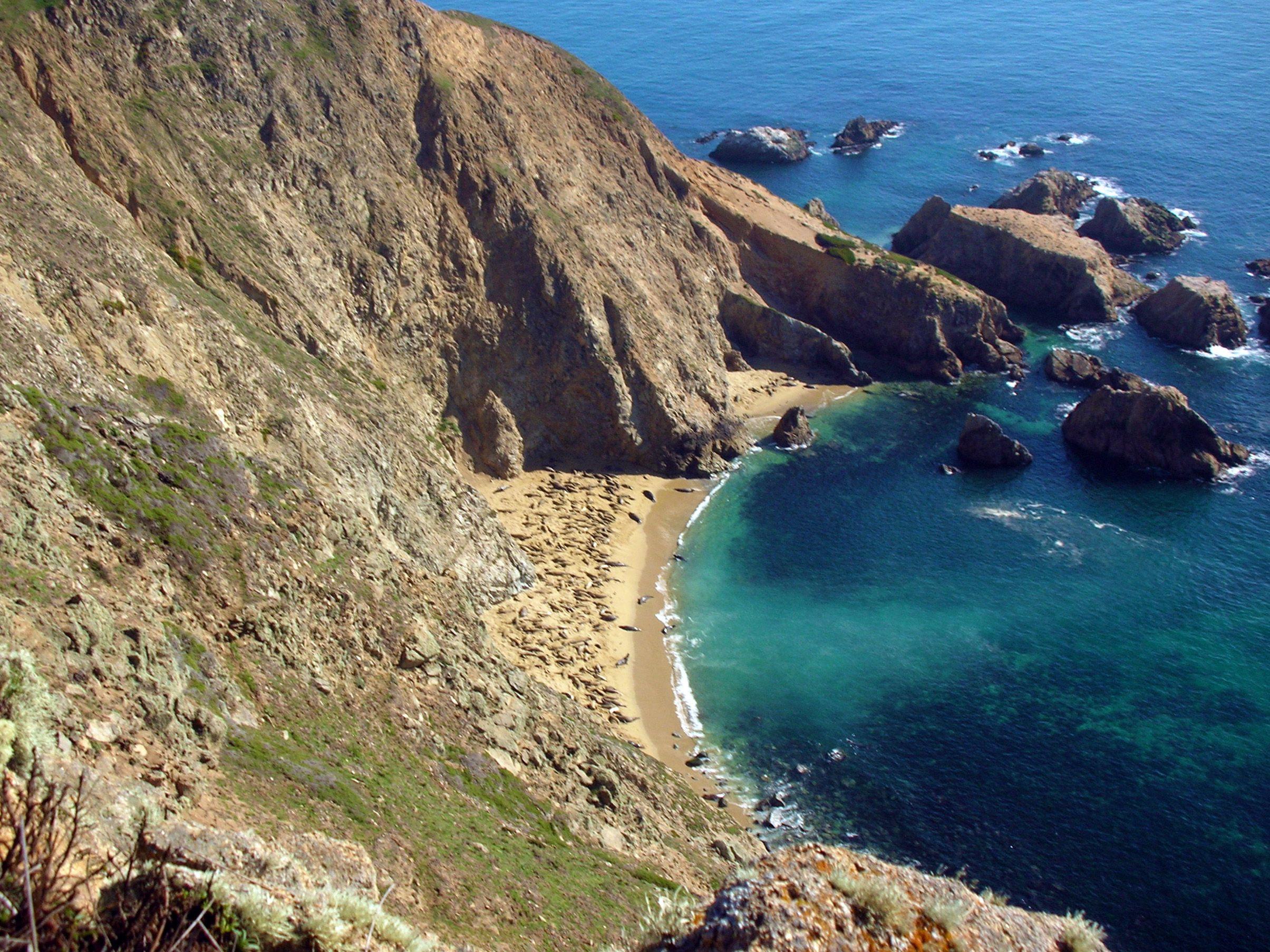 Point Reyes Headlands Colony