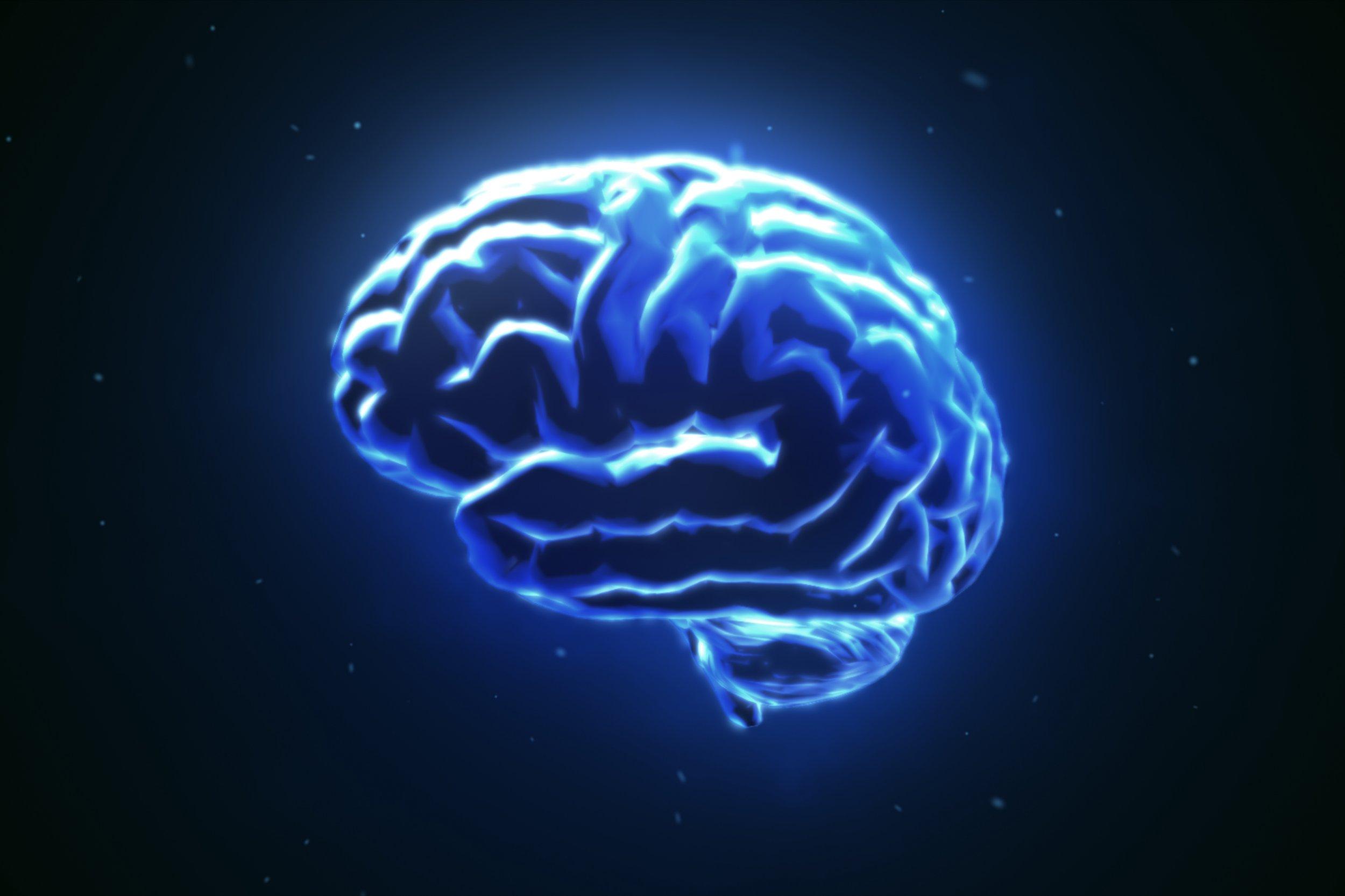 brain stock getty