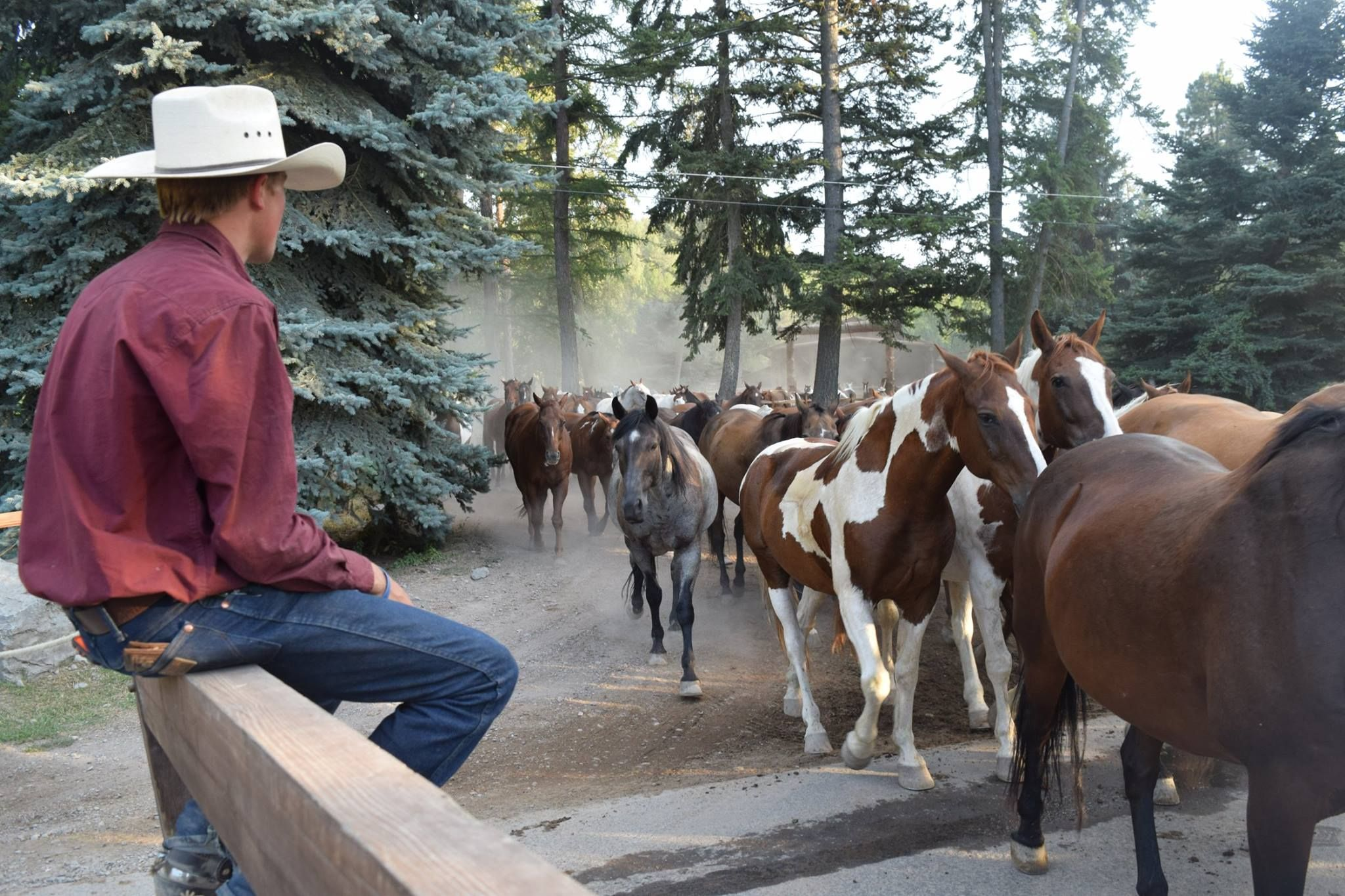 Go West: Hit the Road on the Ultimate Adventure Through Wyoming and Montana