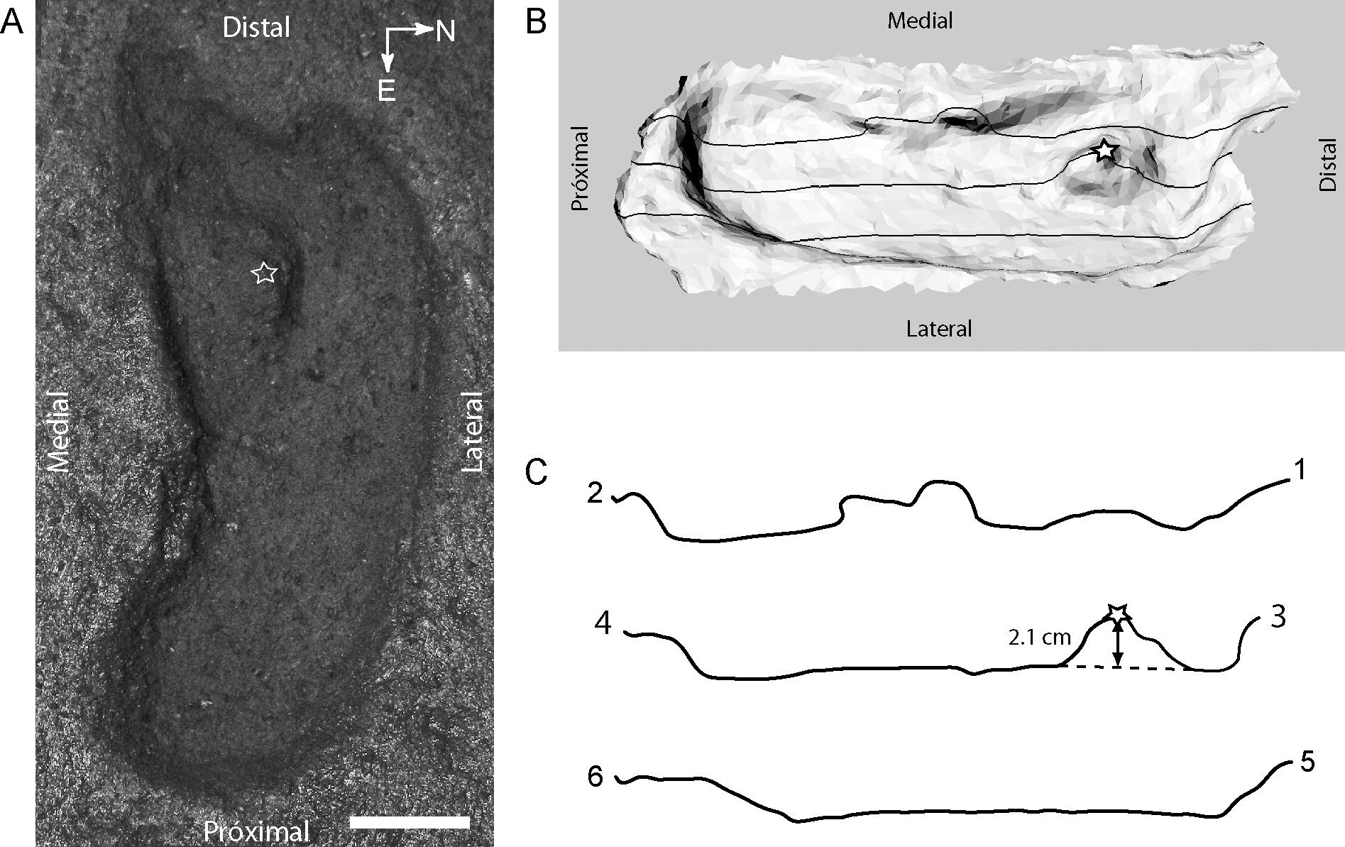 earliest human footprint, Americas
