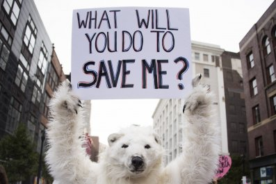 global warming climate change protest polar bear