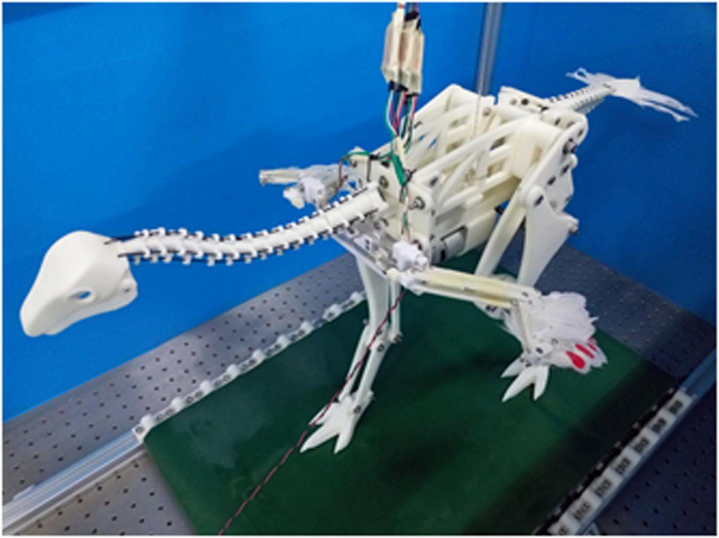 Caudipteryx robot, dinosaur