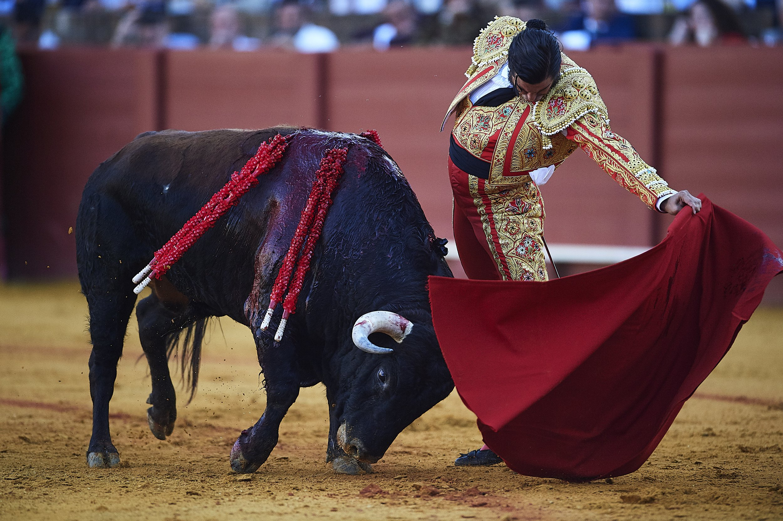 Bullfight, Tears