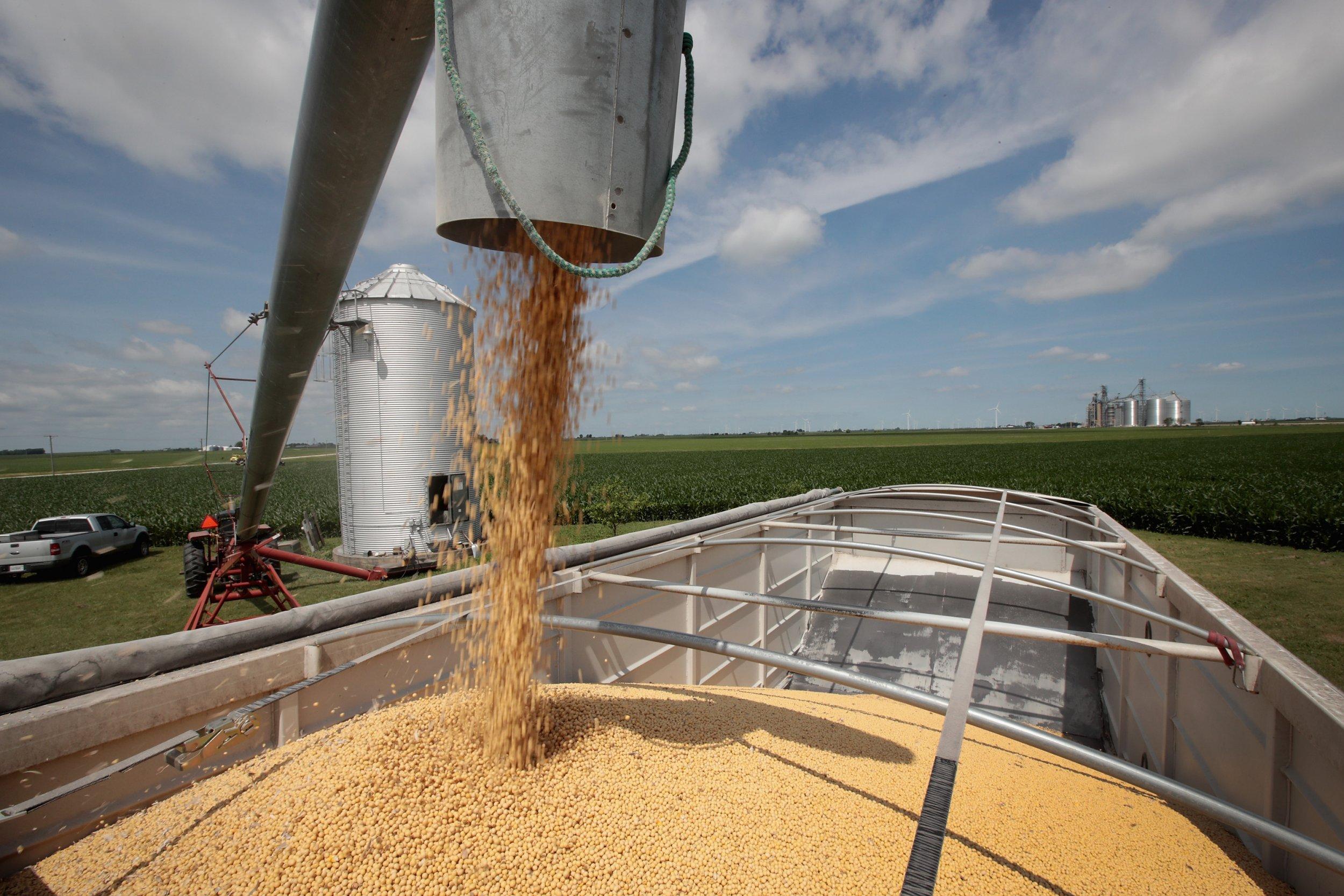 farm, union, president, trump, subsidy, trade, china