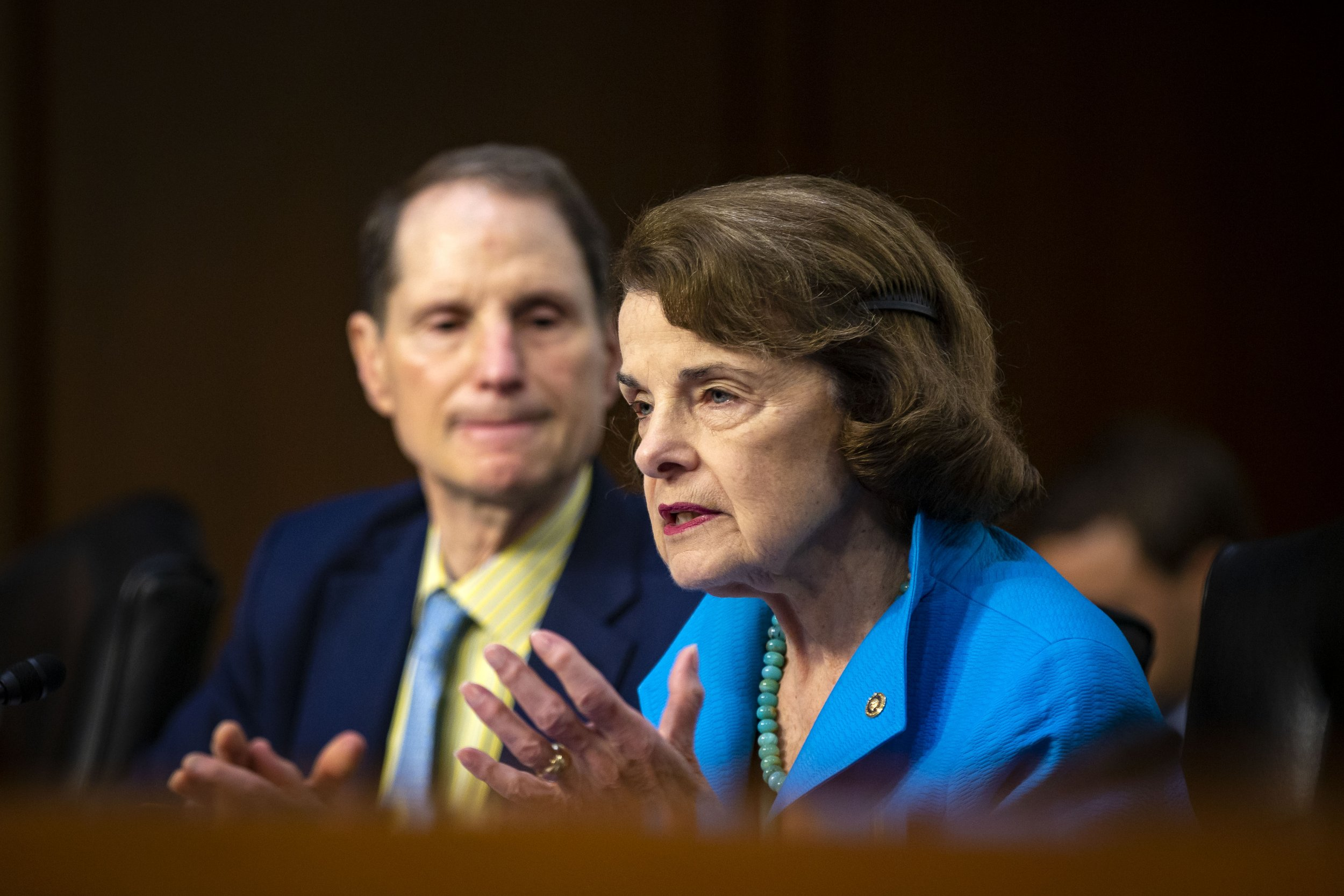 Democrats, Dianne Feinstein, contempt Donald Trump Jr
