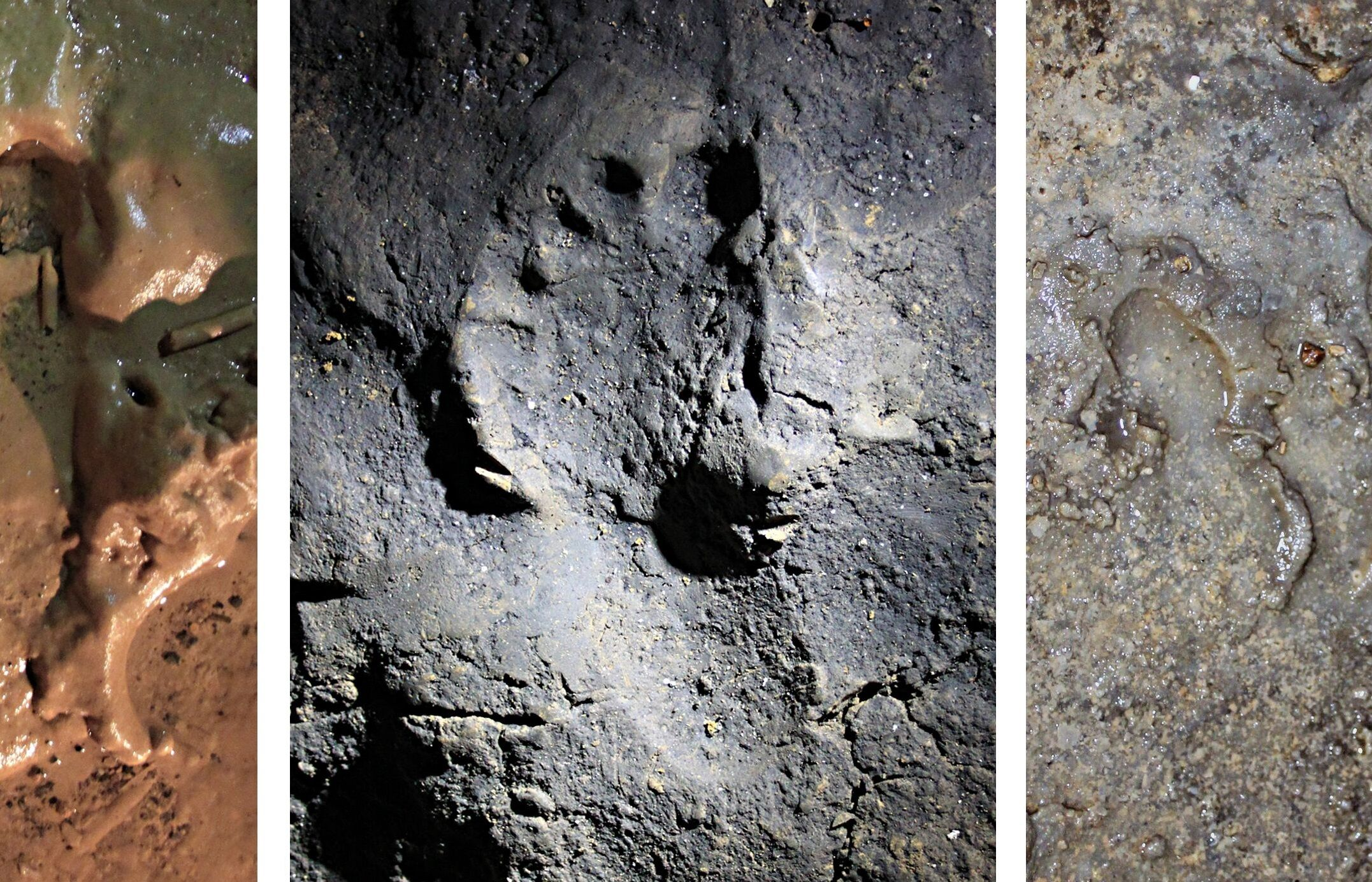 ancient footprint