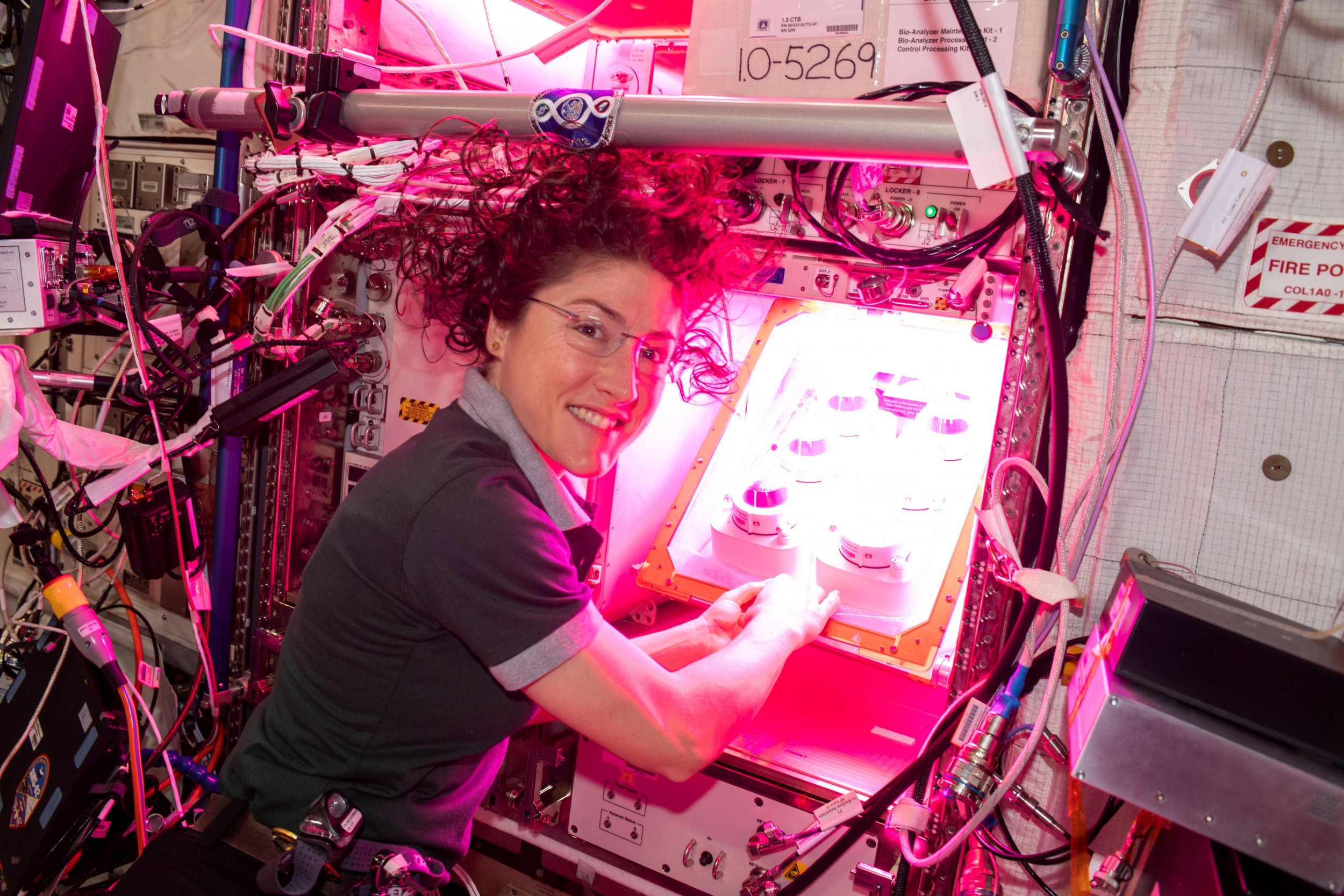 Veg-PONDS-02 experiment, NASA, ISS, astronaut