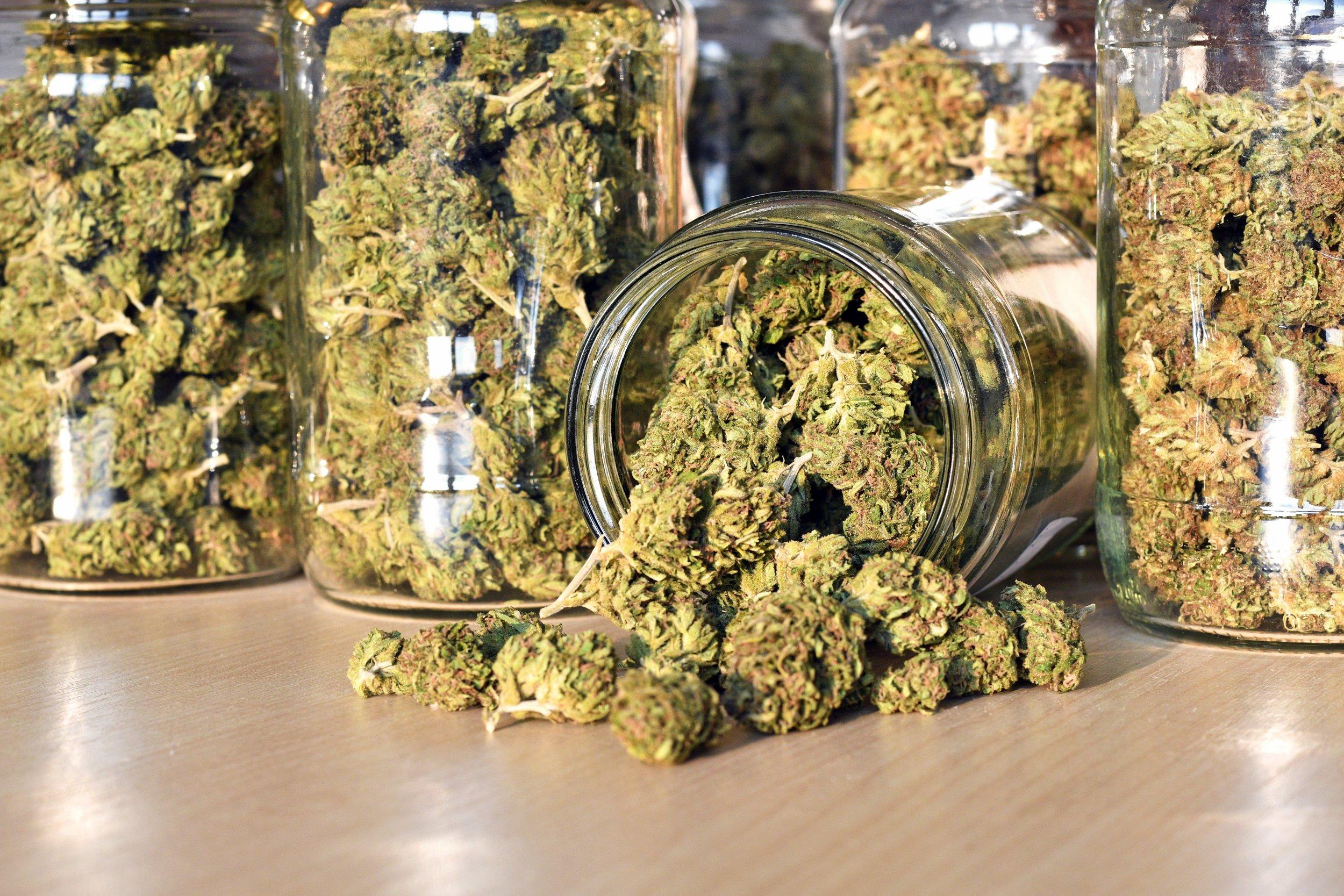 cannabis marijuana stock getty