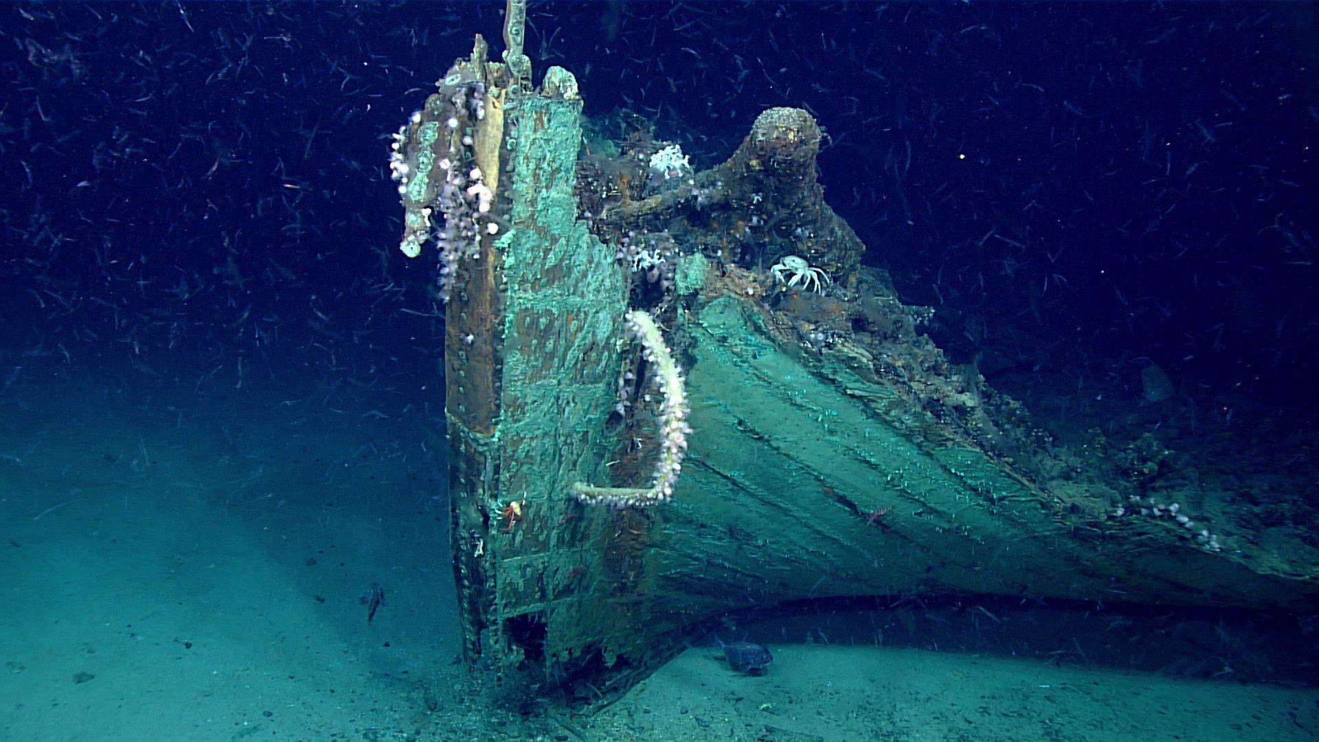 Shipwreck, Florida