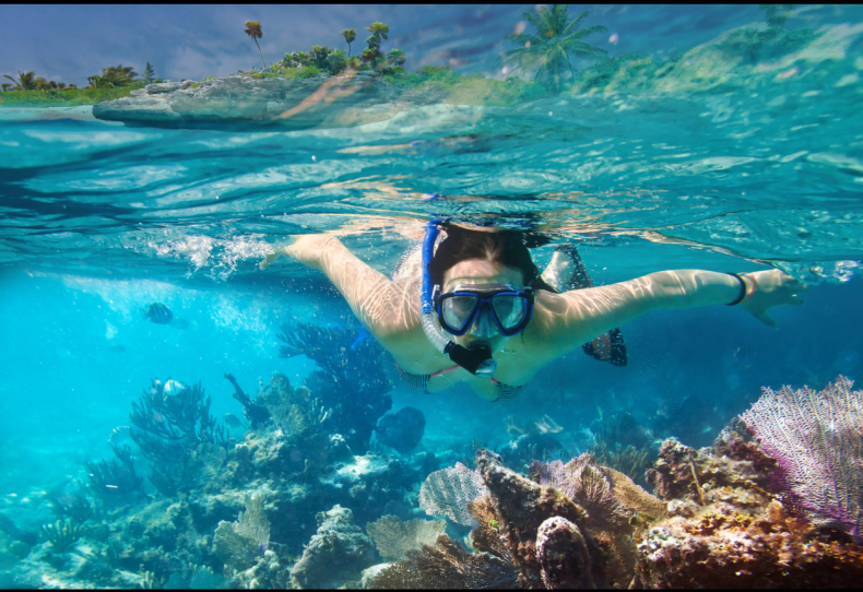 Los Cabos snorkeling