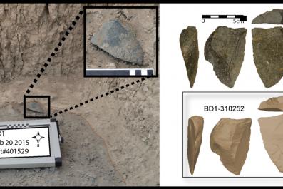 excavated stone tools