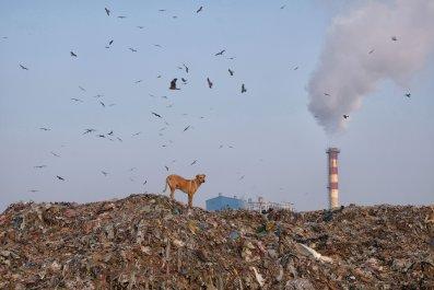 Ghazipur landfill new delhi
