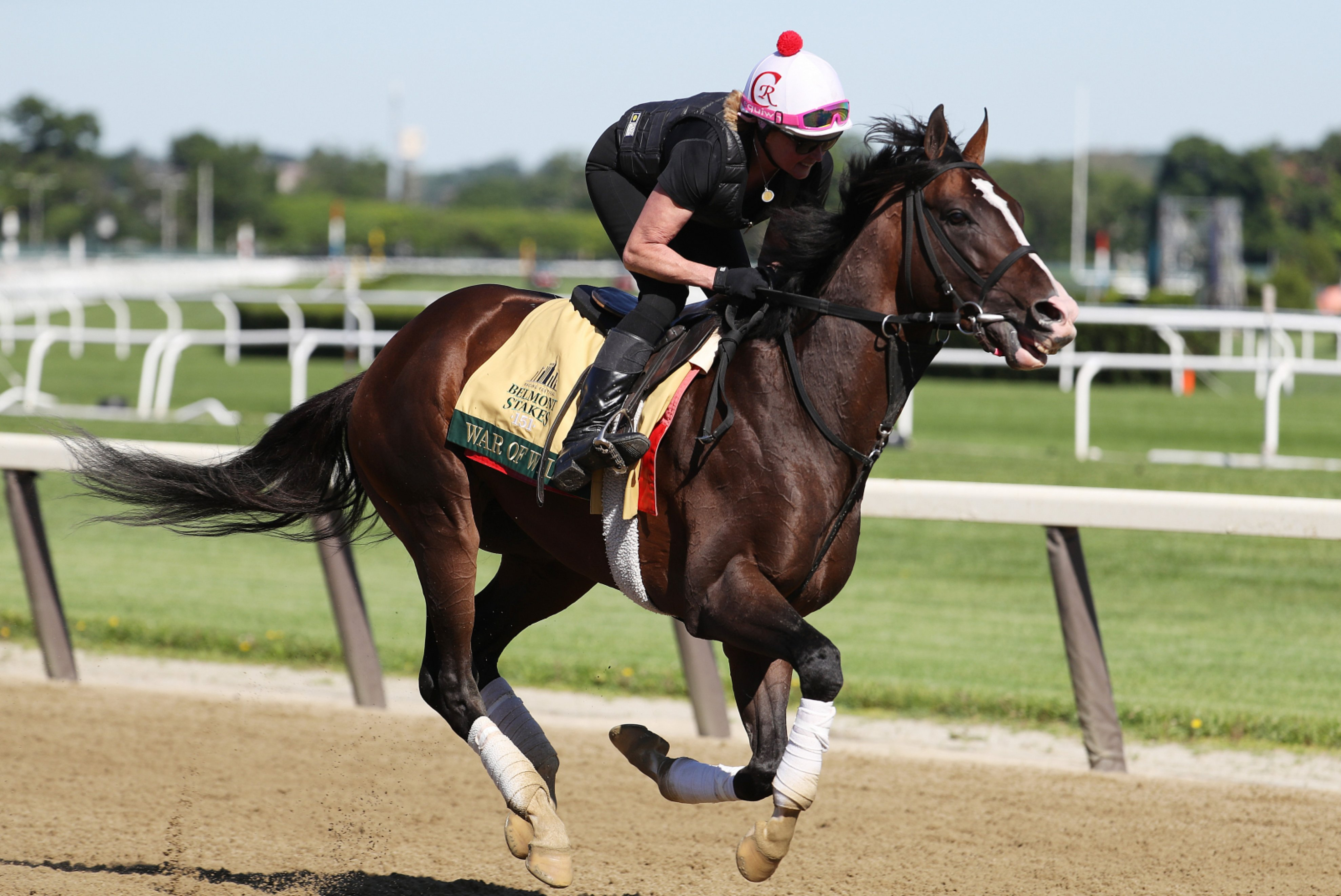 Belmont Stakes: Start Time, TV Channel, Live Stream, Post