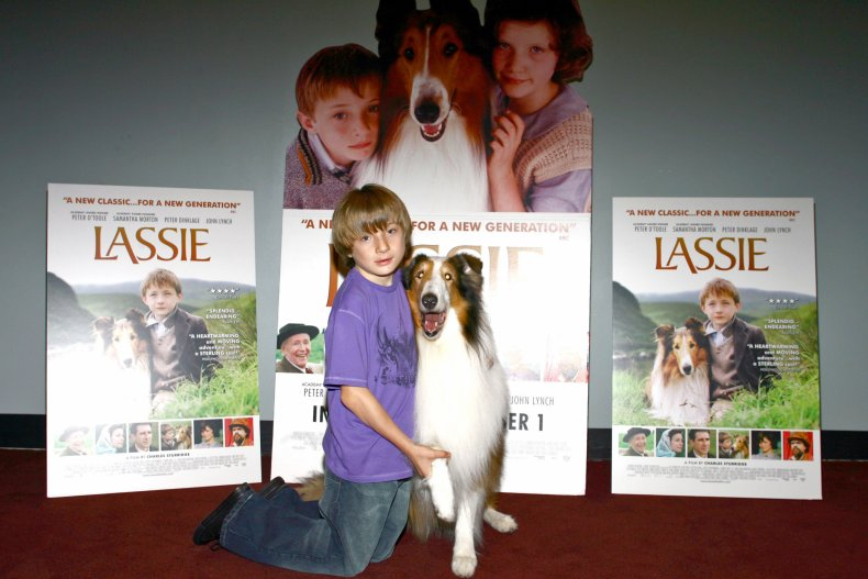 Lassie Peter Dinklage 50th birthday