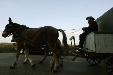 An Amish man drives his horse drawn wagon in Nickel Mines, Pennsylvania