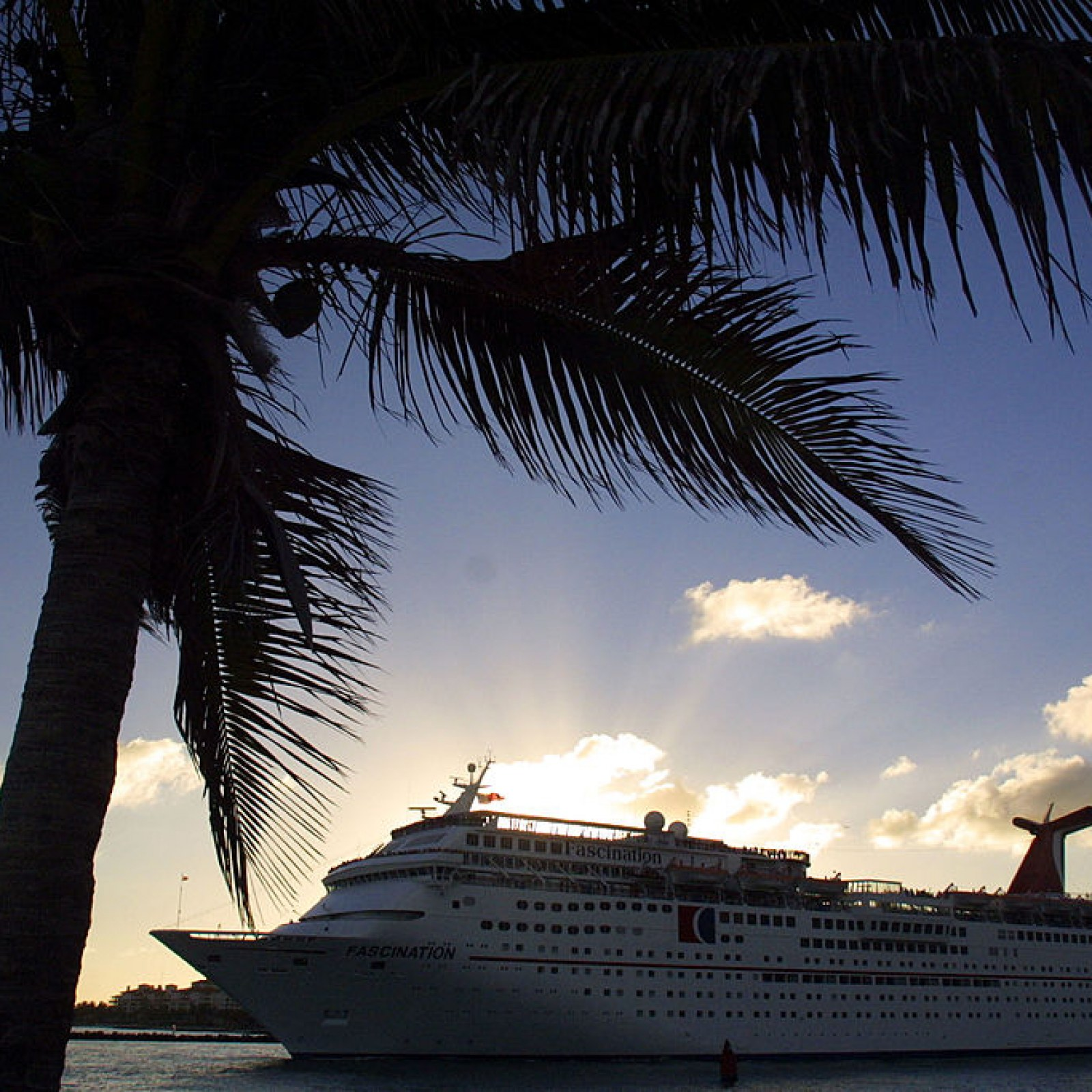 Man Drowns in Cruise Ship Swimming Pool After Partying on