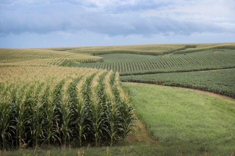 Iowa farm trade war