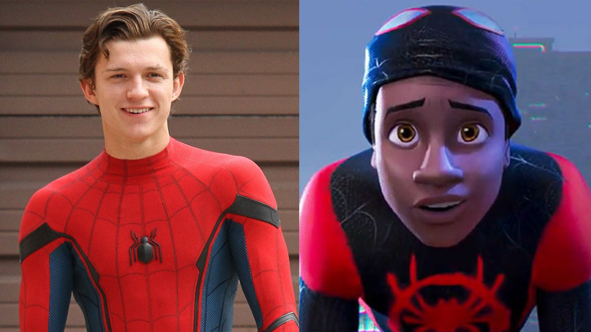 Tom Holland Wants To See Spider Man Into The Spider Verse