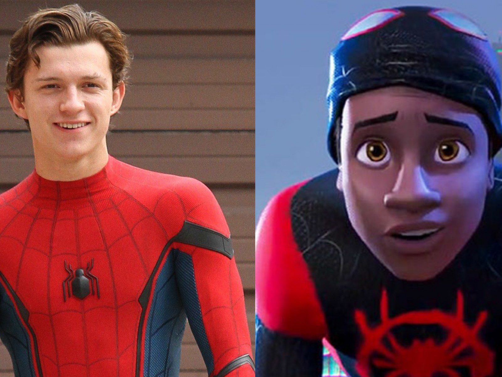 Tom Holland Wants to See 'Spider-Man: Into the Spider-Verse' Miles