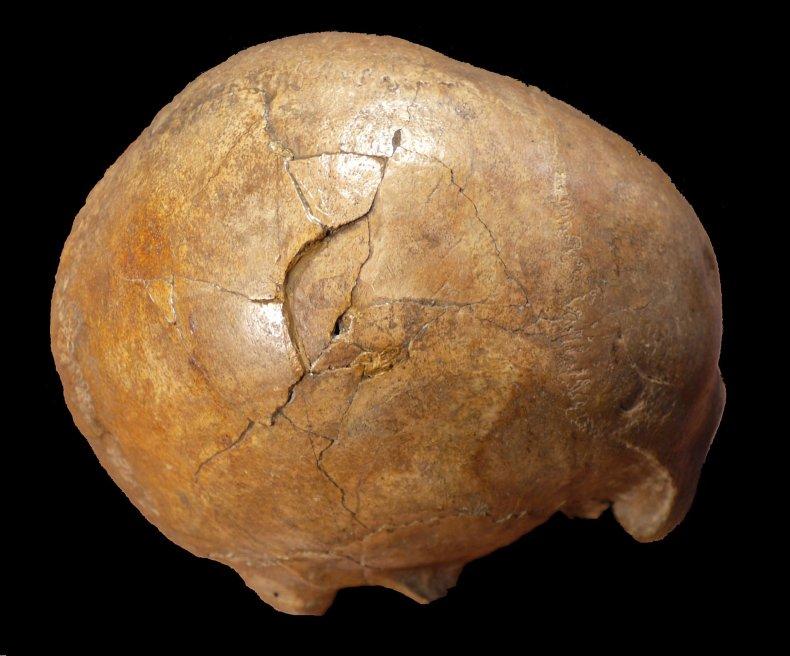 paleolithic murder