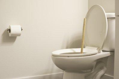 Toilet, Clogger