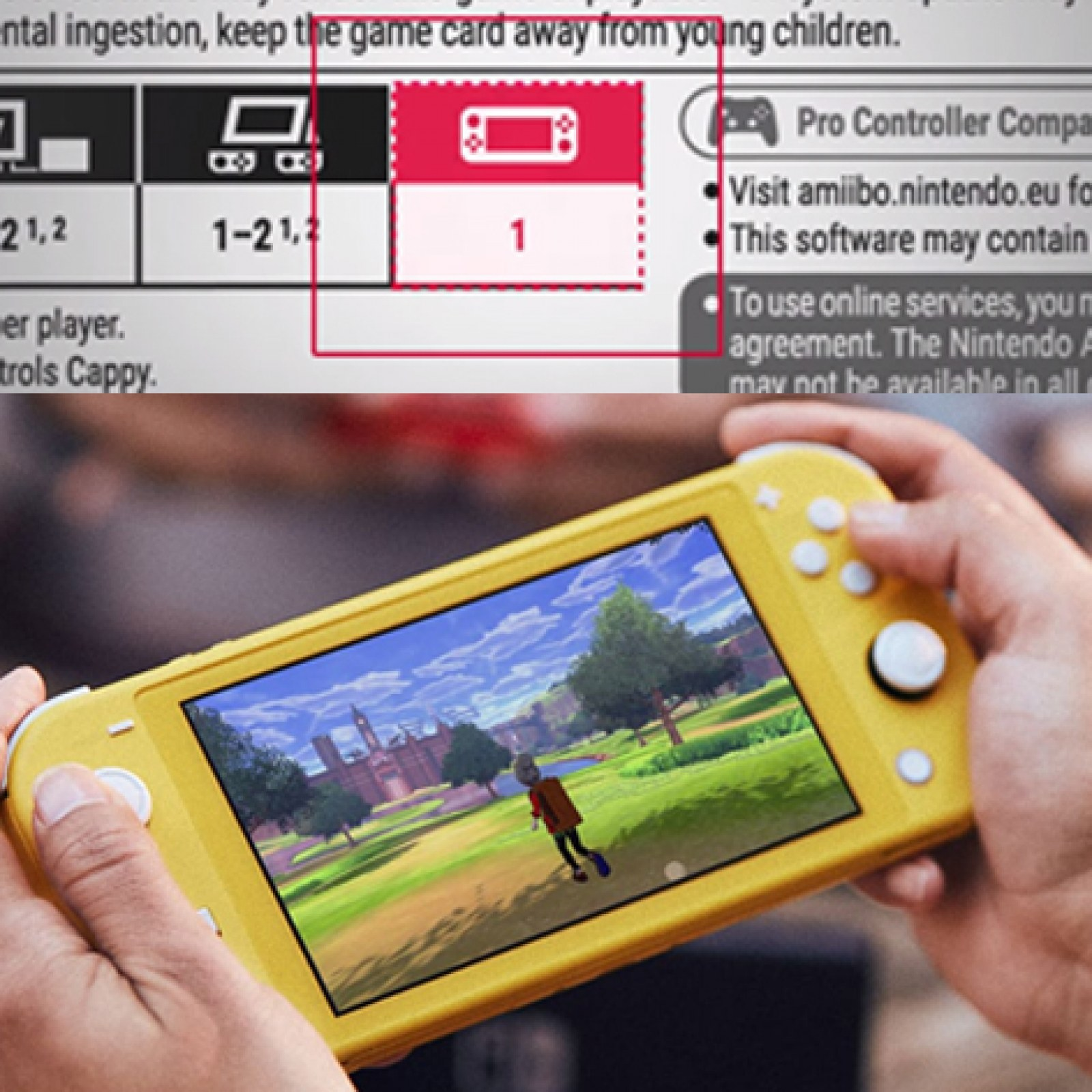 Nintendo Switch Lite Won T Play Certain Games Unless You Have Joy