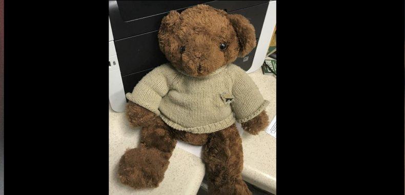 teddy bear ashes