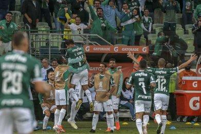 Palmeiras, Copa Libertadores