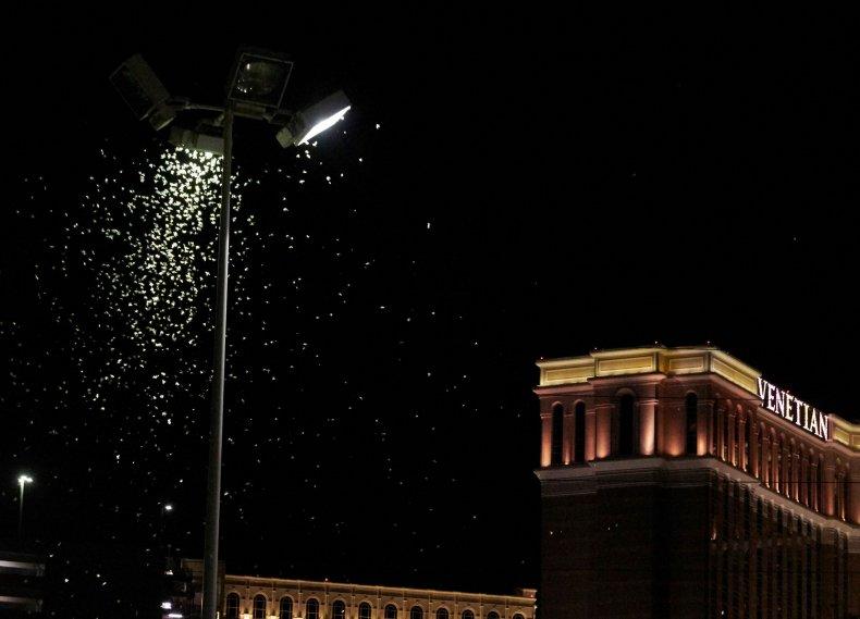 grasshoppers, Las Vegas