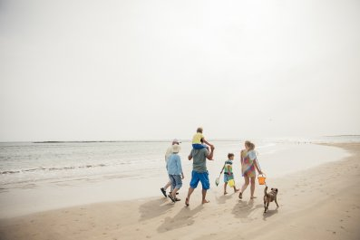 family, beach, dog, holiday, vacation, stock, getty