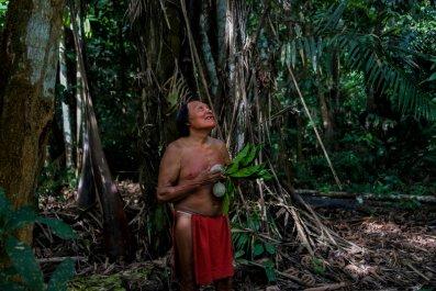 BRAZIL-AMAZON-INDIGENOUS-WAIAPI-FOREST