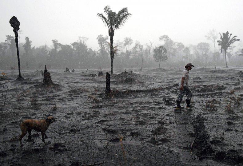 Amazon, rainforest, fires, Macron, G7, Bolsonaro, aid