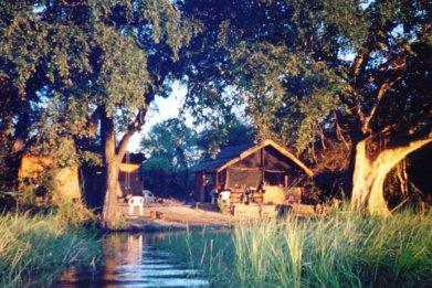 Baboon Camp