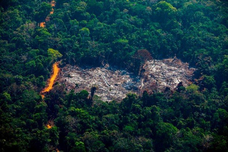 amazon fire aerial view brazil