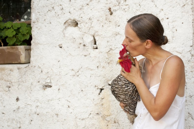 Woman kissing chicken