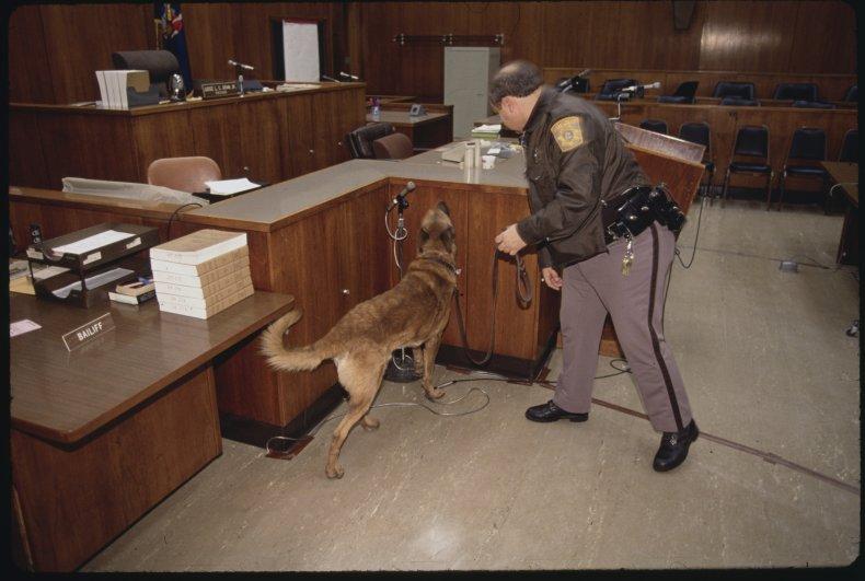 Court Attack Dog Boy Threat