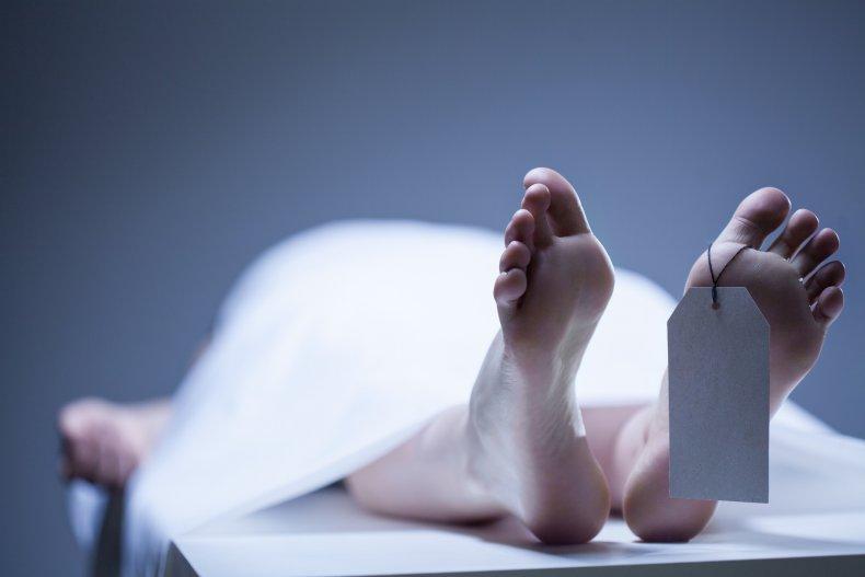 human corpse