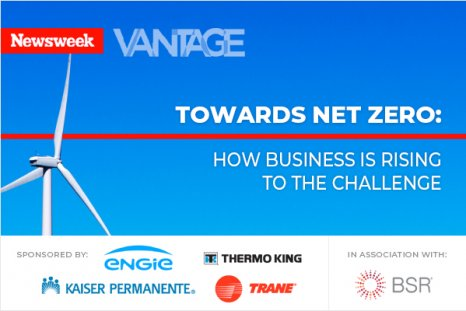 Net Zero: How Business is Rising to the Challenge