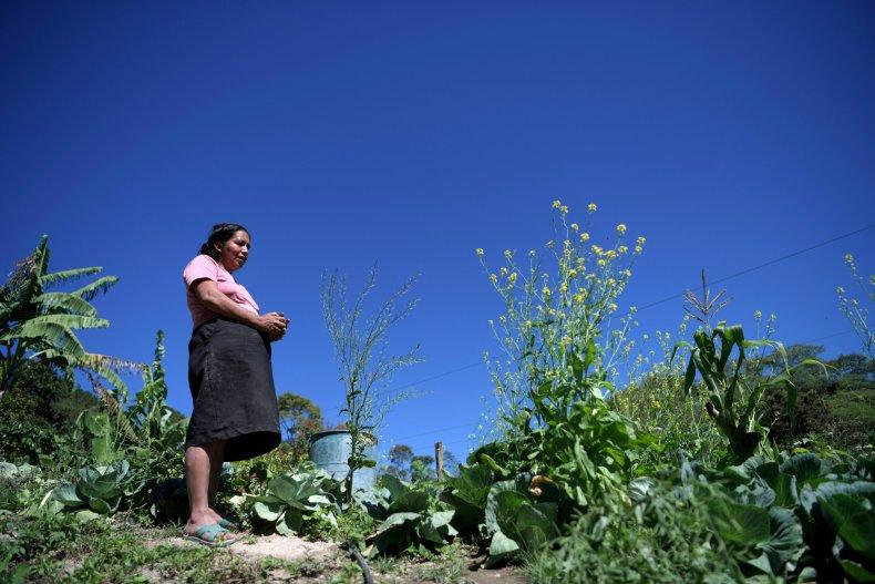 Drought in Guatemala