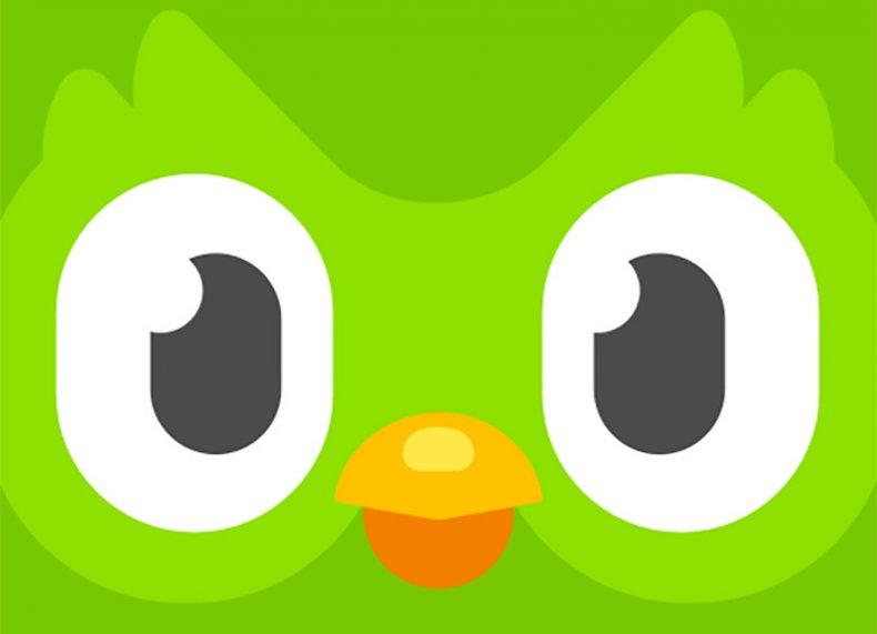 Duolingo's owl mascot