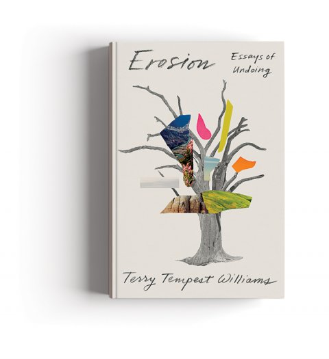CUL_Books_Nonfiction_Erosion Essays of Undoing
