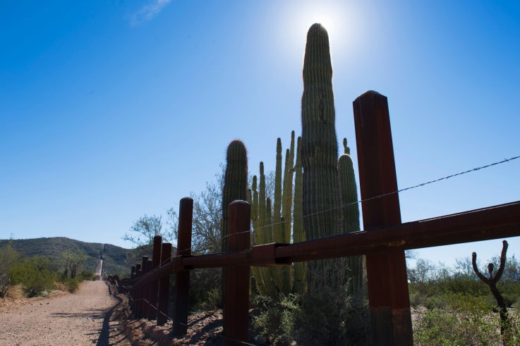 Donald Trump's Border Wall Construction Crew Just Bulldozed Through the Iconic Cacti This National Park Was Created to Protect