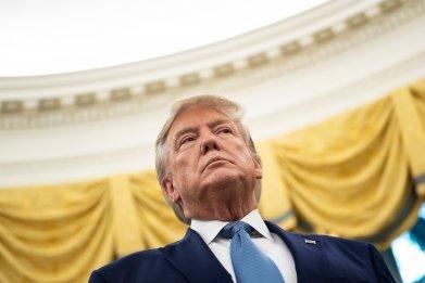 Donald Trump tax cuts wealth economists